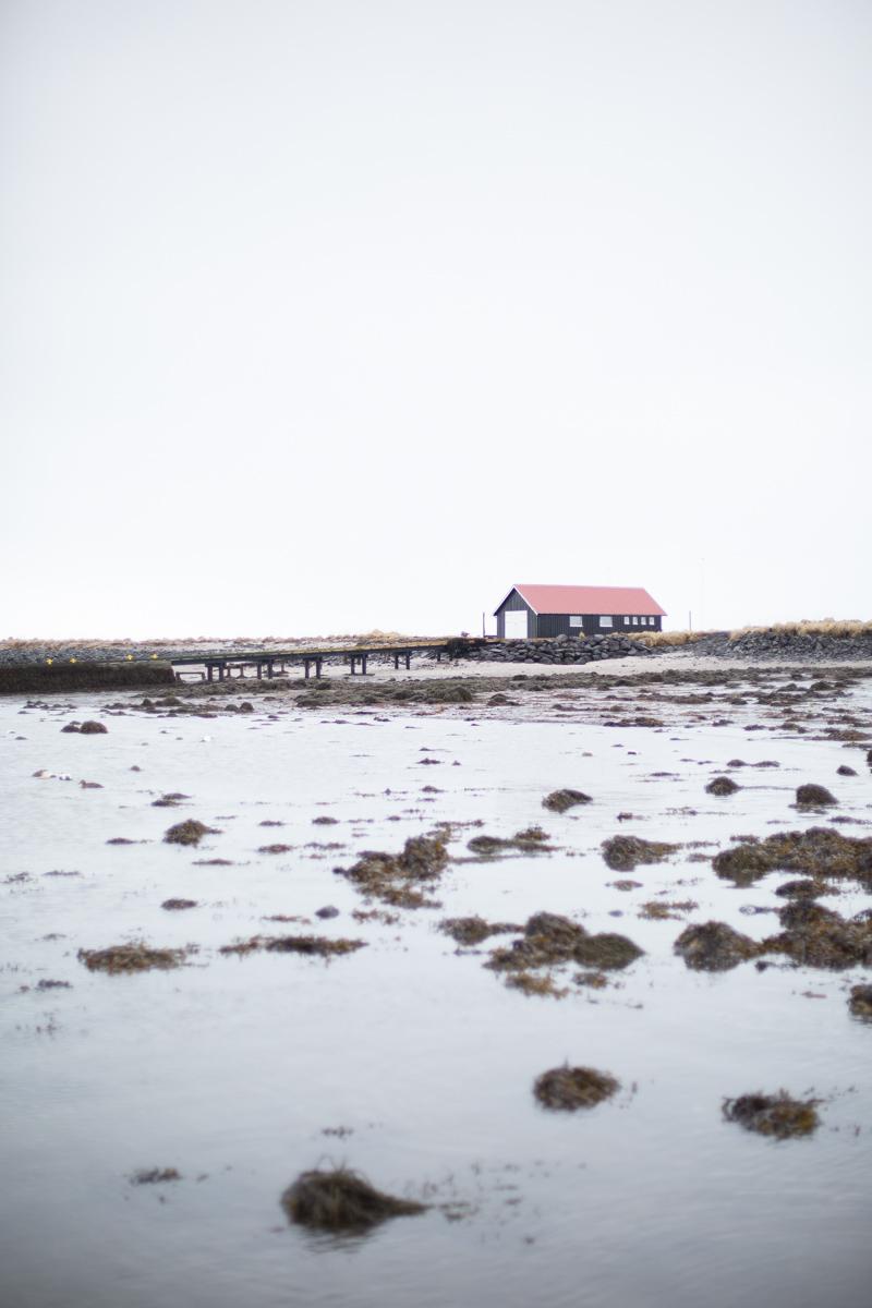 theeverygirl-daniellemoss-iceland-1
